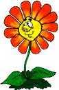Logo Immergr�n